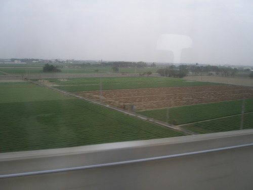 写真23 高鉄の車窓から、台湾の田畑1
